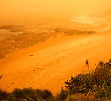 orange morning of the apocalypse down at the beach by Juilee  Pryor