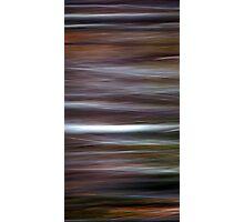 Wild Wind Photographic Print