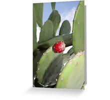 PRICKLY PEAR CACTUS FRUIT Greeting Card