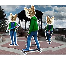 Skater Cats Photographic Print