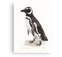 Penguin Watercolor Painting Canvas Print