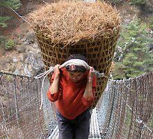A Sherpa Hauling Pine Needles by Cedar Wolf