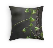 sundew plant Throw Pillow