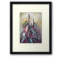 Waiting to bloom Framed Print