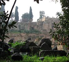 My Moment in the Roman Forum by Terra Berlinski
