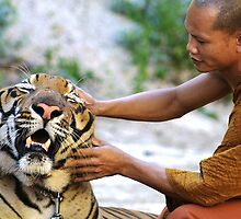 The Tiger & the Monk by Adam Martin