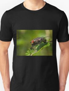 Grey fleshfly Unisex T-Shirt