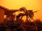 orange morning of the apocalypse first light by Juilee  Pryor