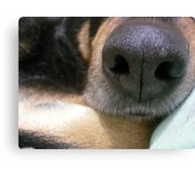 A Sense of Smell Canvas Print
