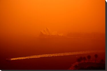 Red Sails - SYDNEY. AUSTRALIA by Bryan Freeman