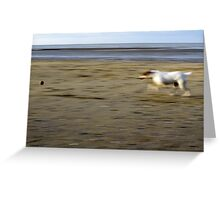 Dog & Ball Greeting Card