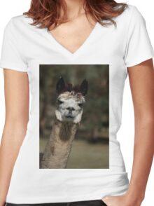 Oh Hai! Women's Fitted V-Neck T-Shirt