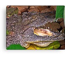 """Nile Crocodile"" Canvas Print"