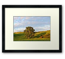 English Countryside In Somerset Framed Print