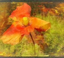 """Poppy (from the  """"Painted Flowers"""" series) by EvaMarIza"""