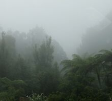 Kaimai Ranges near Tauranga, New Zealand by sandysartstudio
