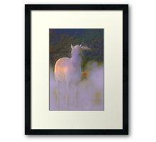 WHITE LADY  Framed Print