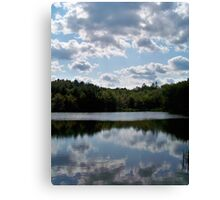 Forest Mirror Canvas Print
