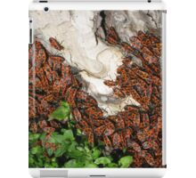 A bugs' feast iPad Case/Skin