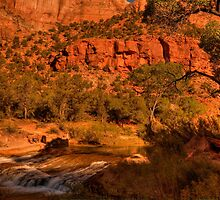 Afternoon Delight At Zion © by © Hany G. Jadaa © Prince John Photography