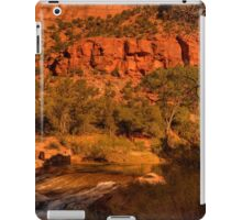Afternoon Delight At Zion © iPad Case/Skin