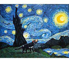 Starry Tasmanian night Photographic Print