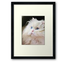 A Little Piece of Heaven Here on Earth Framed Print
