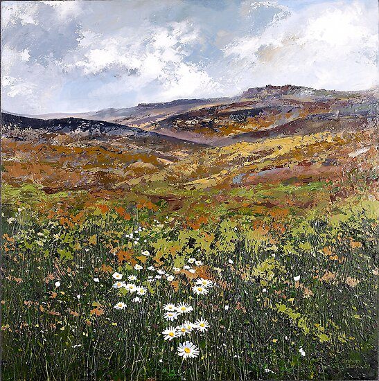 Derbyshire Dales n Daisies by Graham Clark