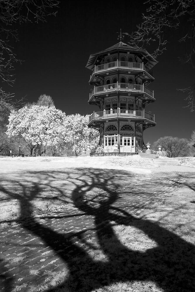 Creeping Shadows by Bowman1
