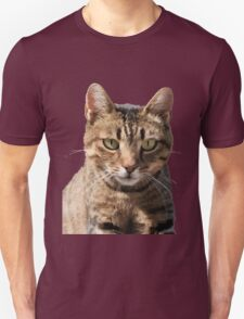 Portrait Of A Cute Tabby Cat With Direct Eye Contact Isolated T-Shirt