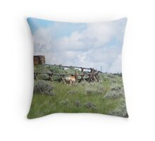 On The Wrong Side Of The Fence Throw Pillow