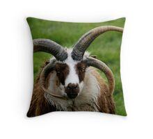 Sheepish Throw Pillow
