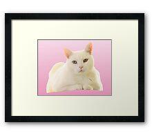 Vector Cat Print X Framed Print