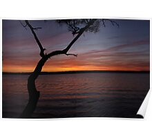 the basin sunset Poster
