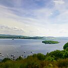 Craigie Fort Panorama by Susan Dailey