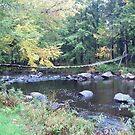 Adirondack Foot Bridge by linmarie