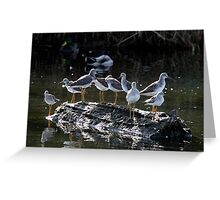 Menagerie on a Tiny Floating Island Greeting Card