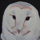 barn owl by wendy1968