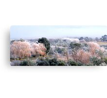 Frosted Autumn... Canvas Print