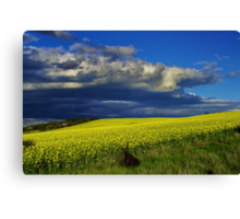 """""""The Yield"""" Canvas Print"""