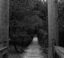 The Bridge by g richard anderson