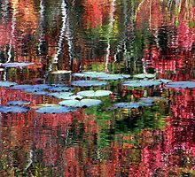 Lily Pads On Autumn Waters by Len Bomba