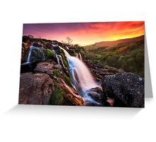 Loup of Fintry Greeting Card