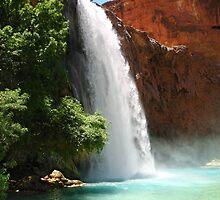 Havasu Falls by psnoonan