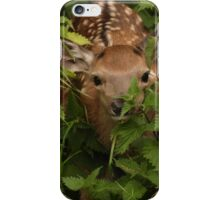 I spy with my little eye something beginning with b... iPhone Case/Skin