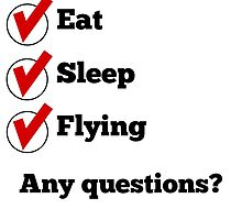Eat Sleep Flying Checklist by GiftIdea
