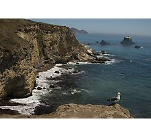 Point Reyes National Seashore, CA Photographic Print