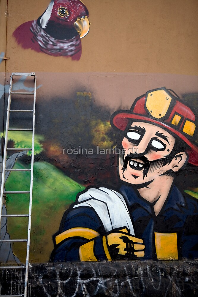fresh on the  walls  by Rosina  Lamberti