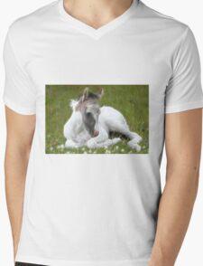 Many Small Childs Dream.  Mens V-Neck T-Shirt
