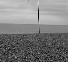 Brighton Beach England by ShanePThomas